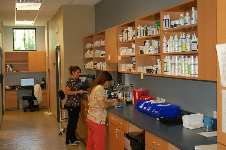 Cary Grove Animal Hospital Cary Il Pharmacy Amp Online